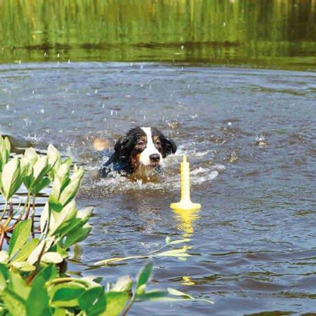 Aport do wody Aqua Toy MOT®-Aqua Zabawka pływająca dla psa 29cm