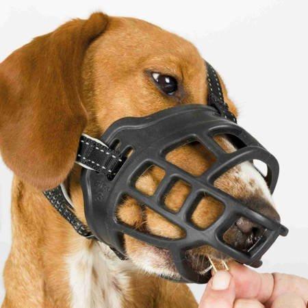 Kaganiec fizjologiczny dla psa M pies może swobodnie oddychać, pić i jeść z ręki